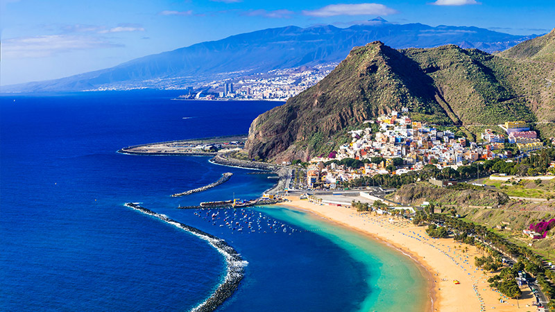 Discover the Canaries